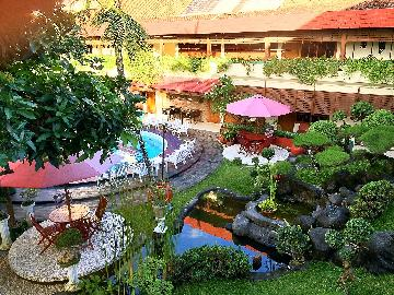 BEAUTIFUL GARDEN BESIDE SWIMMING POOL